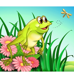A hungry frog at the garden vector