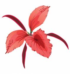 Orchid illustration generated on comp vector