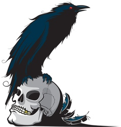 Raven and skull vector