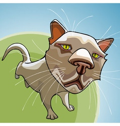 Cartoon cat looking sad in focus vector