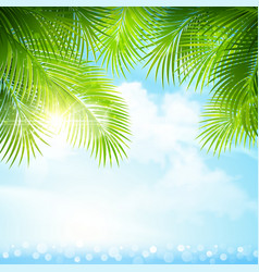 Palm leaves with bright sunlight vector