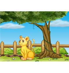 A young tiger inside the fence vector