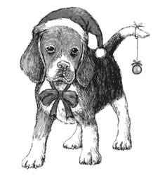 Beagle with christmas hat vector