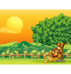 A king lion inside the wooden fence vector