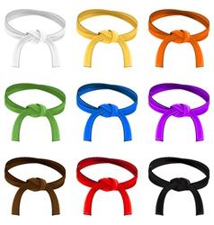 Martial art belt rank system vector