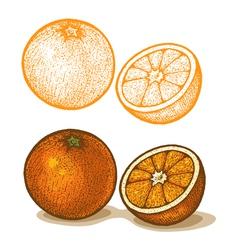 Orange retro vector