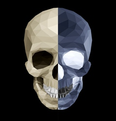 Crystal skull in two colors vector