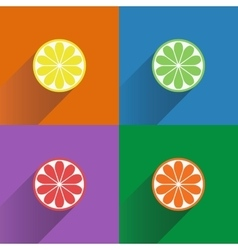 Collection of four citrus fruits icons in flat vector