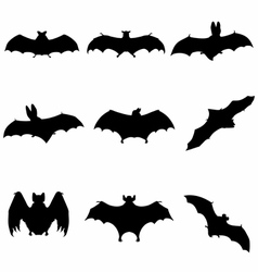 Bats flying silhouette detailed vector