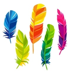 Set of abstract bright transparent feathers on vector