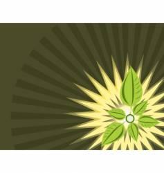 Leaf decoration vector
