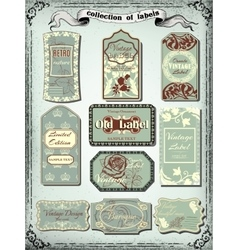 Collection of color vintage labels for design vector