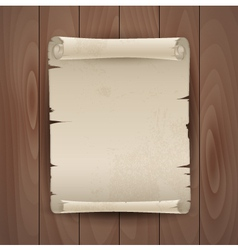 Background with manuscript vector