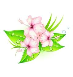 Summer hibiscus vector
