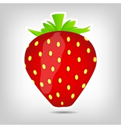 Sweet tasty strawberry vector