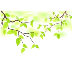 Green leaves with copy space vector