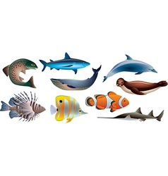Water animals vector