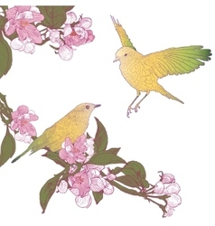 Twigs of blooming apple tree and two birds sitting vector