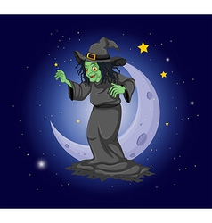 A witch at the sky near the moon vector
