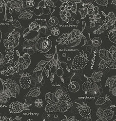Seamless pattern with berries on dark background vector