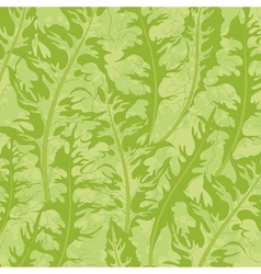 Pattern green dandelion leaves vector