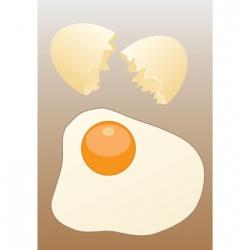 Scrambled egg vector