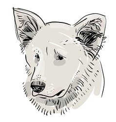 Head muzzle the dog shepherd sketch drawing black vector