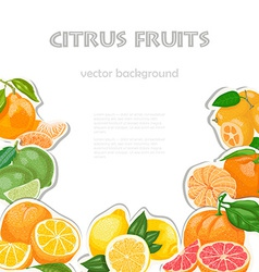 Background with citrus fruits vector