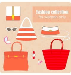 Womens fashion collection of bags and accessories vector