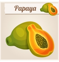 Detailed icon papaya vector