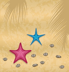 Sand background with starfishes and pebble stones vector