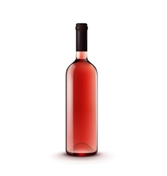 Glass wine bottle vector