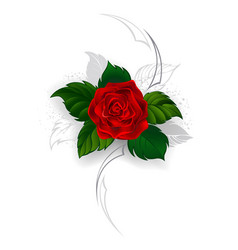 Blooming red rose vector