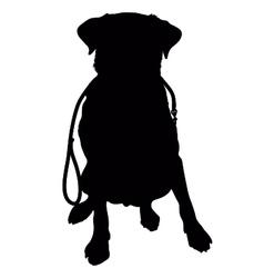 Labrador retriever leash silhouette vector