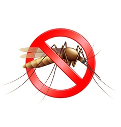 Stop mosquito sign isolated vector