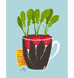 Growing radish with green leafy top in pot vector