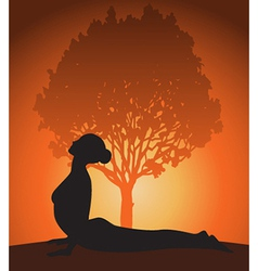 Yoga woman in cobra pose vector