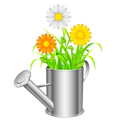 Watering can and flowers vector