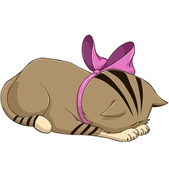 Cute kitten with ribbon bows and apologises vector