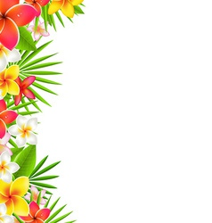 Flowers border vector