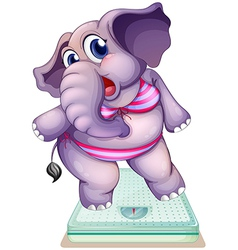 An elephant above the weighing scale vector