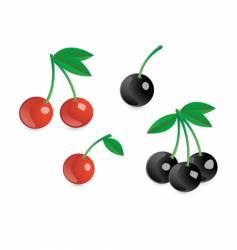 Appetizing berries vector