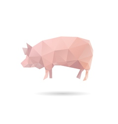 Pig isolated on a white background vector