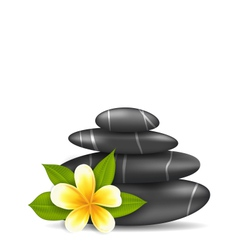 Frangipani flower plumeria and pyramid zen spa vector