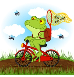Frog on a bike catches flies vector
