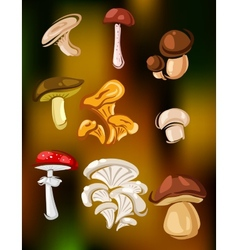 Colorful set of mushrooms and fungi vector