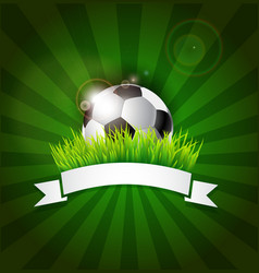 Soccer ball in grass with banner vector