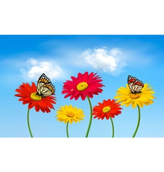 Nature spring gerber flowers with butterflies vector