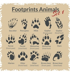 Footprints animals - set vector