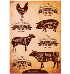 Diagram cut carcasses of chicken pig cow lamb vector